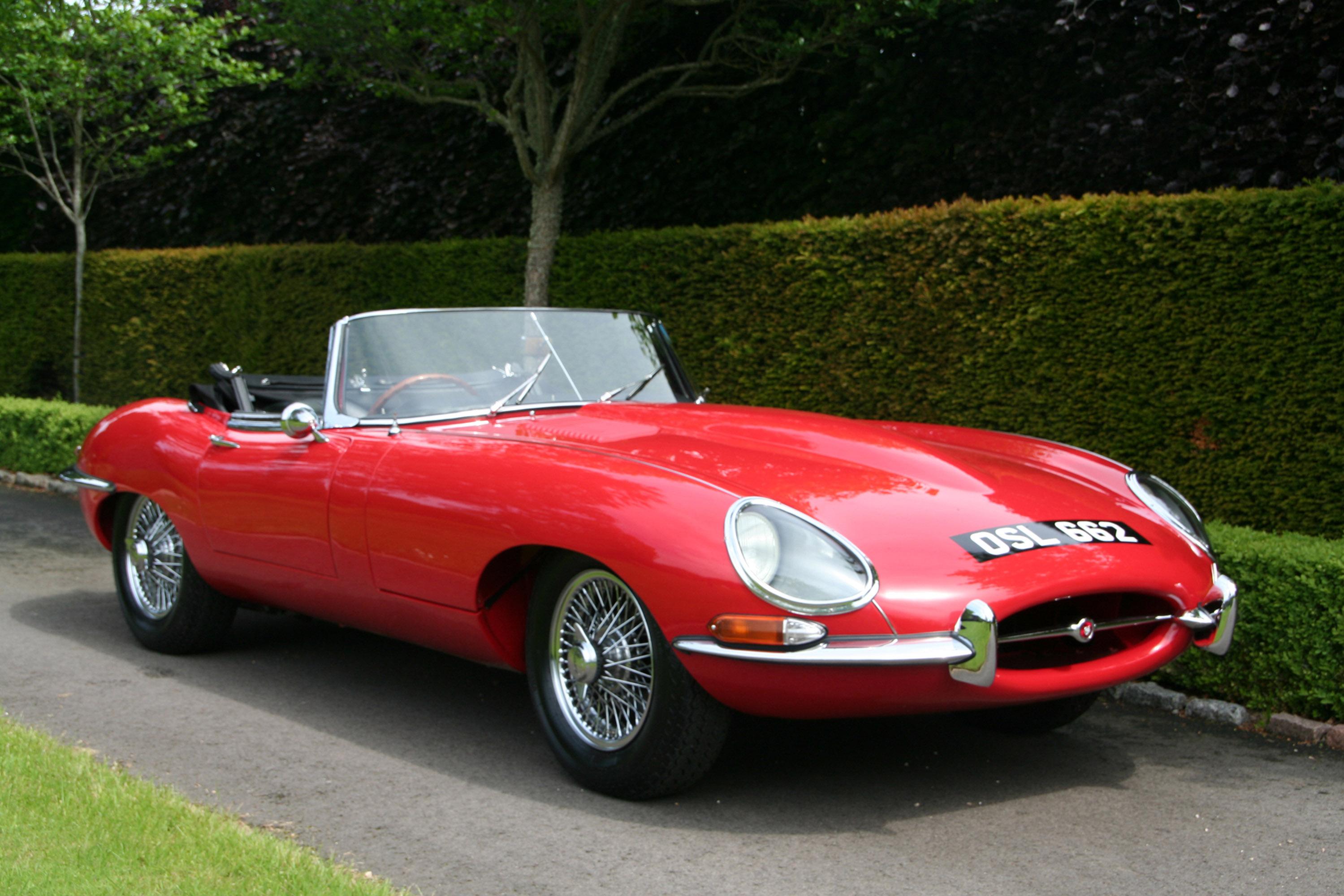 jaguar - фотография №2