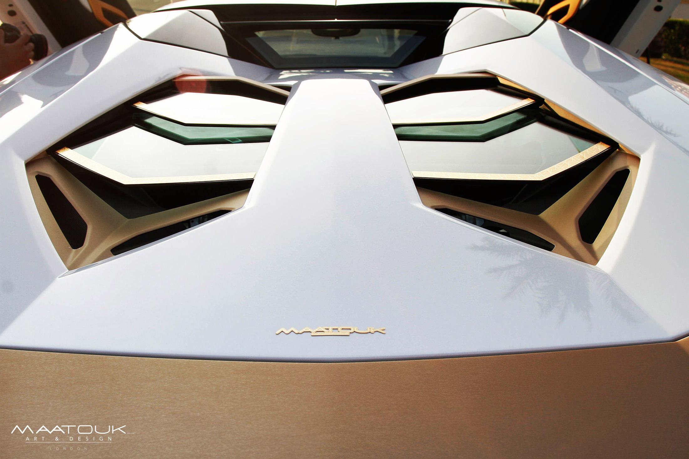 Lamborghini Aventador Roadster Golden Limited Edition Встретиться Ламборгини Авентадор родстер Золотой ограниченное издание [видео] - фотография №10