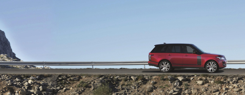 rover - фотография №6