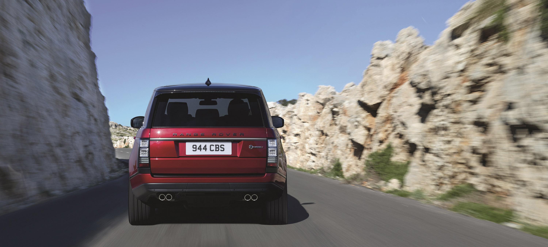 rover - фотография №8